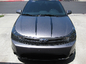 Hood Stripes- 2008-2011 Ford Focus 08-11 Many Colors, Logos 2.0L
